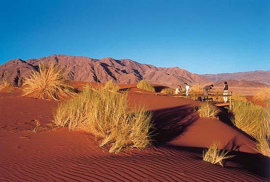 Namibian Desert Express Luxury Train Club Luxury Train