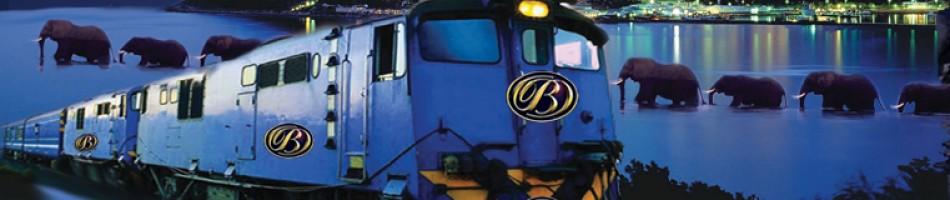 Child train fares underground